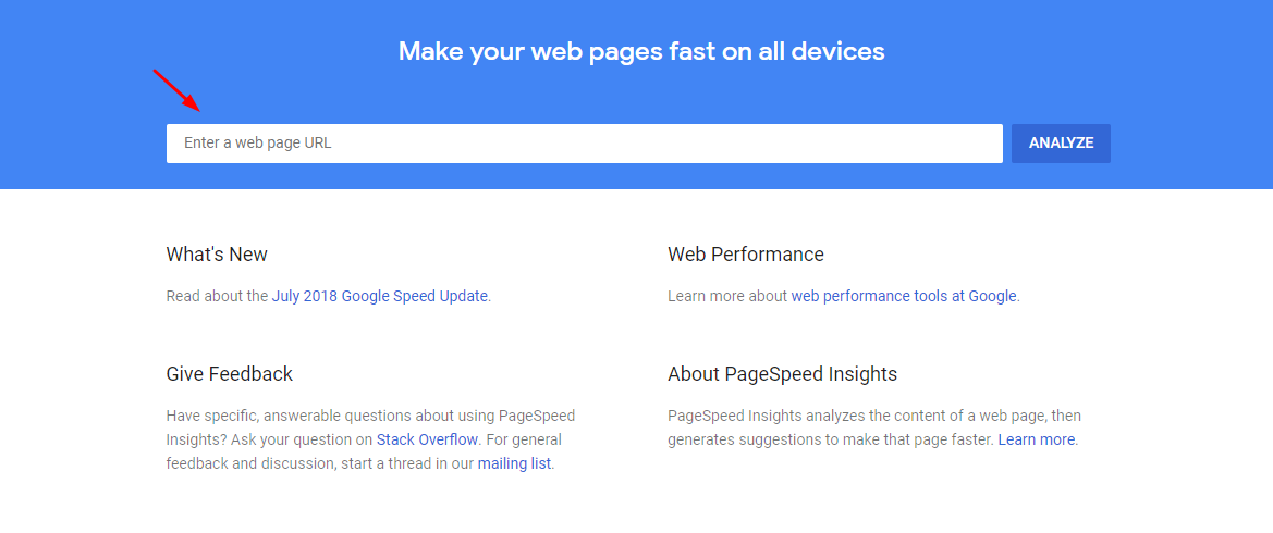 Google Page Speed Insights Screenshot